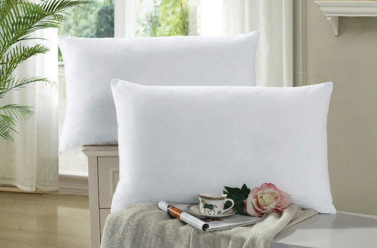 Best China Wholesale Polyester Sleeping Pillow FactoryPrice-Rayson
