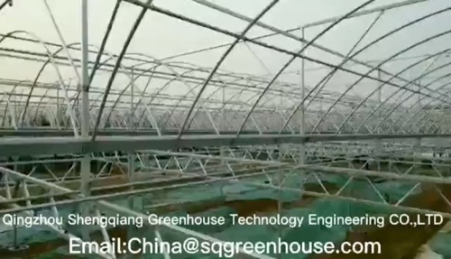 HighQuality agricultural greenhouse Wholesale-Qingzhou Shengqiang Greenhouse Technology Engineering Co., Ltd.