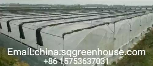 Introto greenhouse cover Shengqiang Greenhouse
