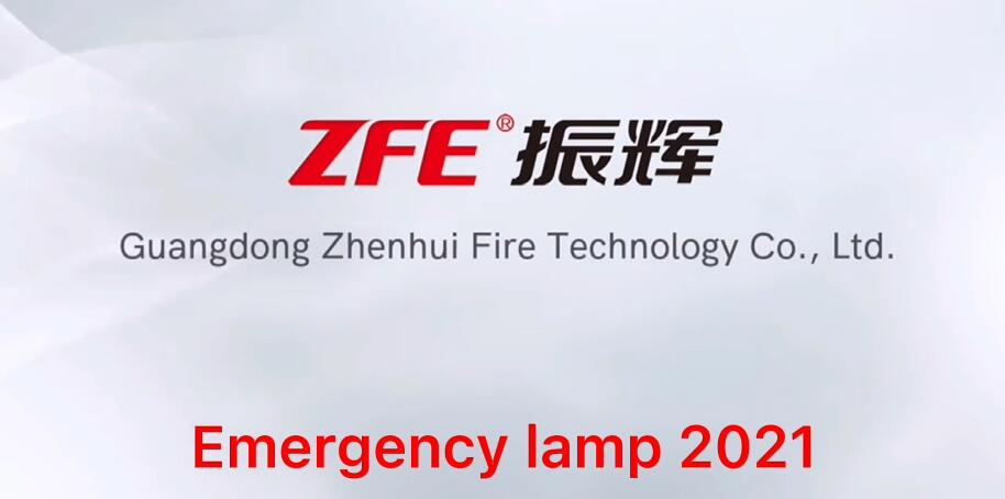 Professional Emergency lamp  manufacturers 2021