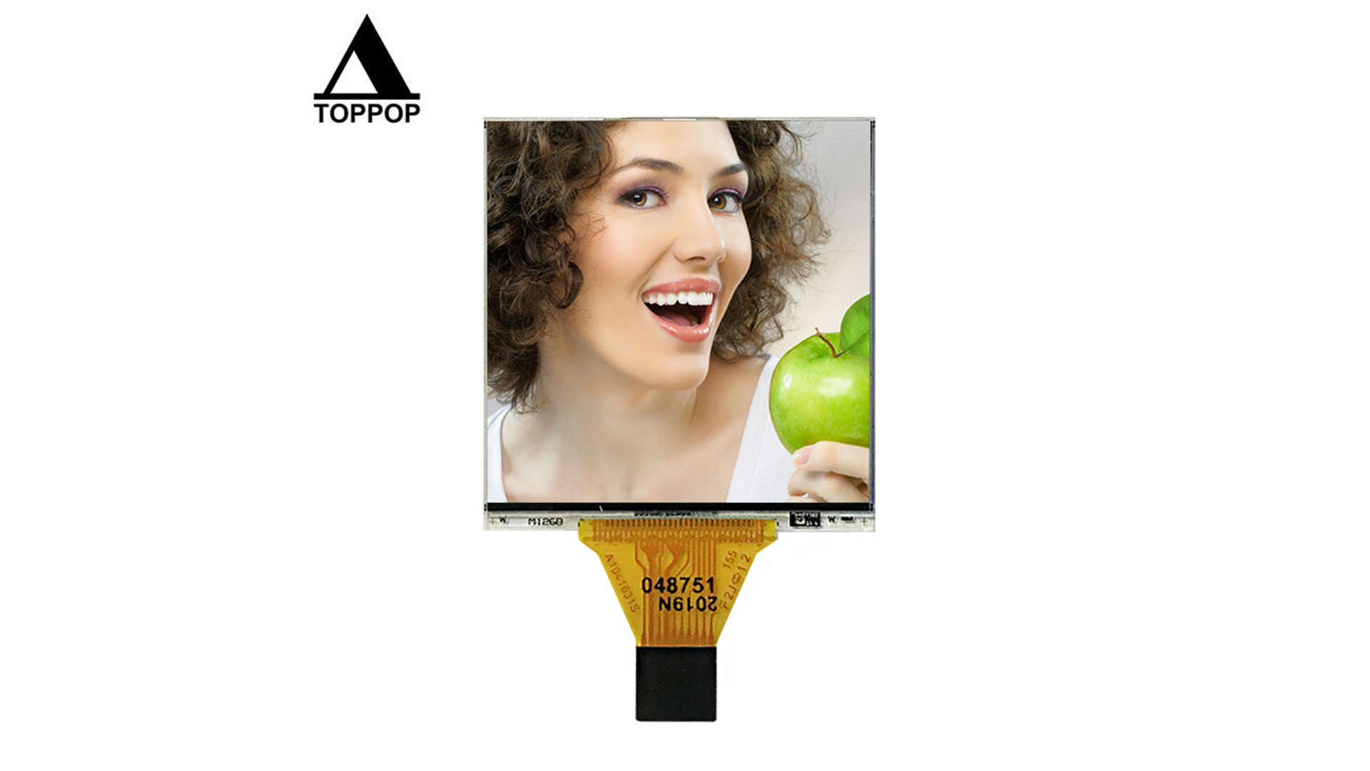 Small IPS lcd 1.28 inch oled lcd module 176*176 Square True RGB Color OLED Display TFT LCD Module For Smart Watch Screen Panel 10 Pin Plug in flexible FPC toppoplcd