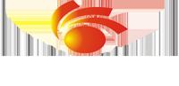 Shenzhen Ridongsheng Printing Co., Ltd.