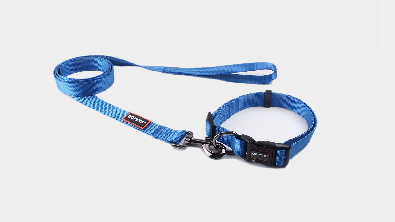 Wholesale Nylon Dog Leash With Solid Color-Guangzhou QQPETS Pet Products Co., Ltd.