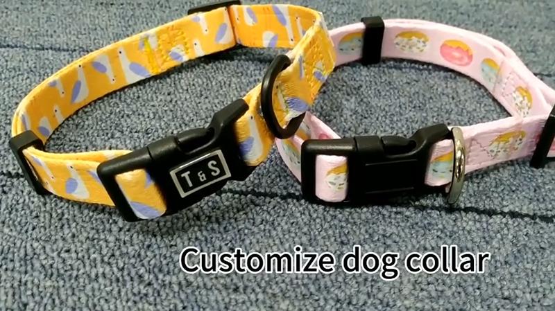 Personalizar collar de perro
