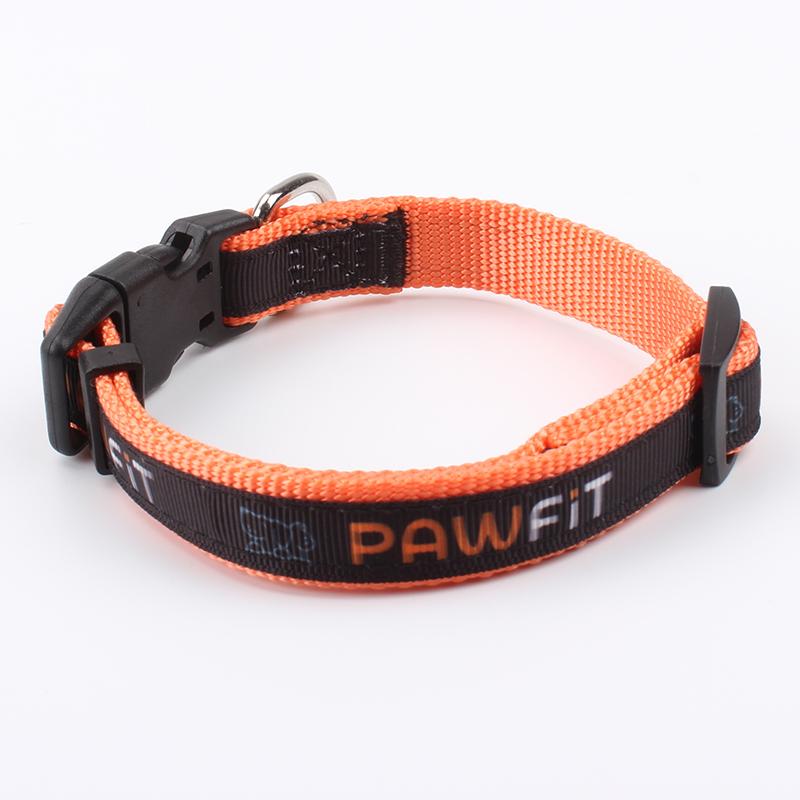 Collares para perros Fábrica: Fabricante Collares para perros Correas de nailon con patrón de sublimación en la cinta