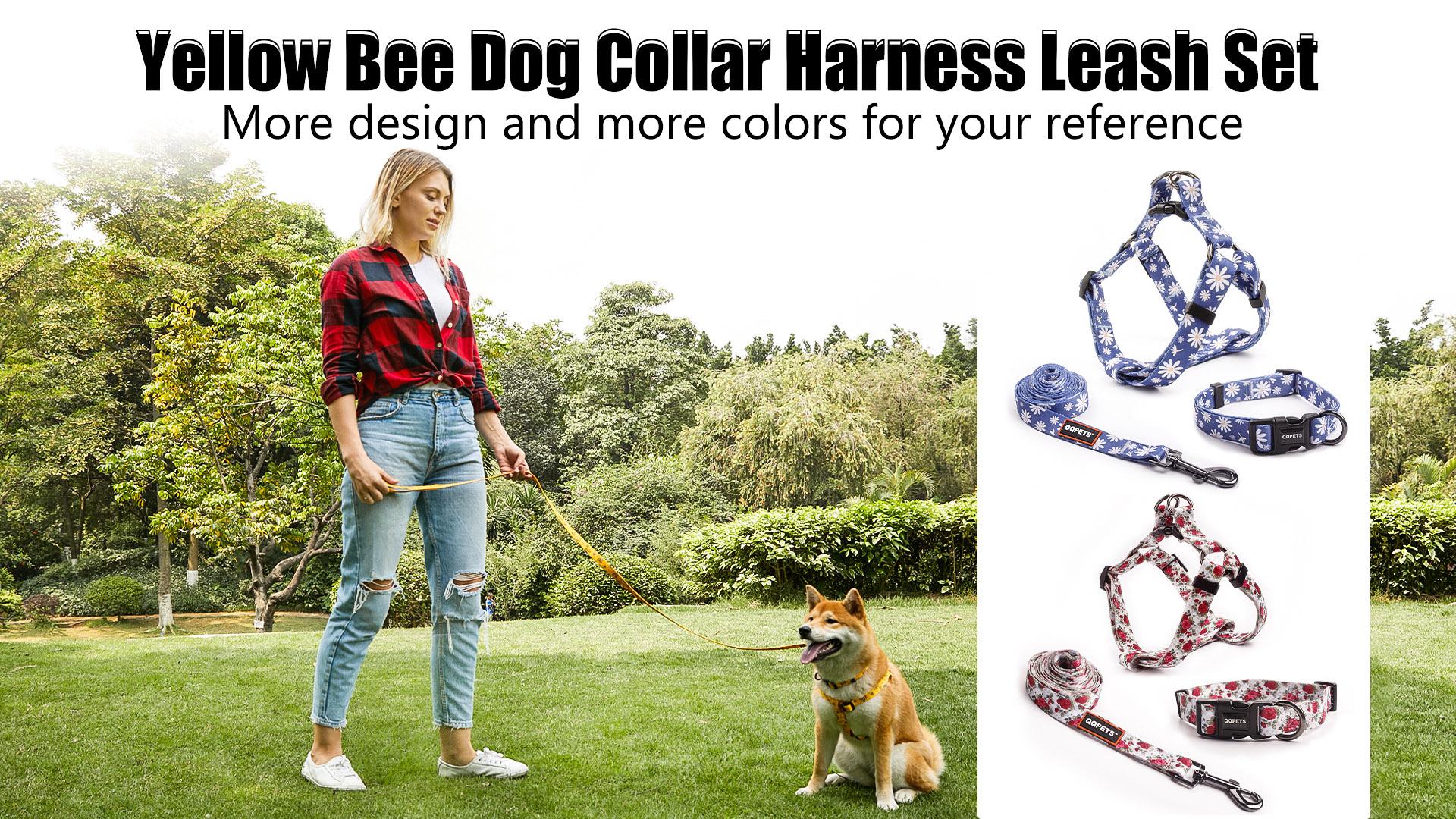 Personalisierte einstellbare gelbe Bienenhundkragen-Kabelbaum-Leine Set für Ihren besten Freund