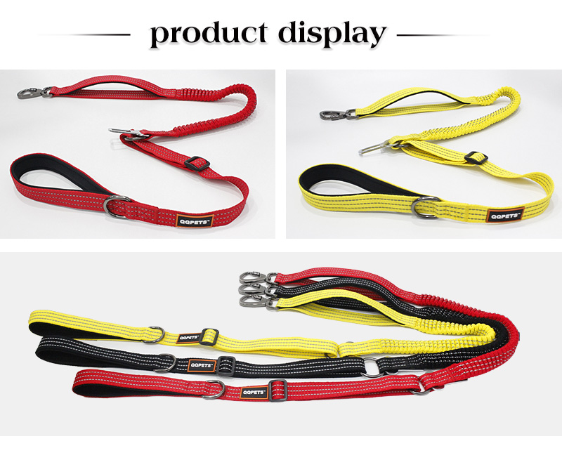 Custom dog leash display