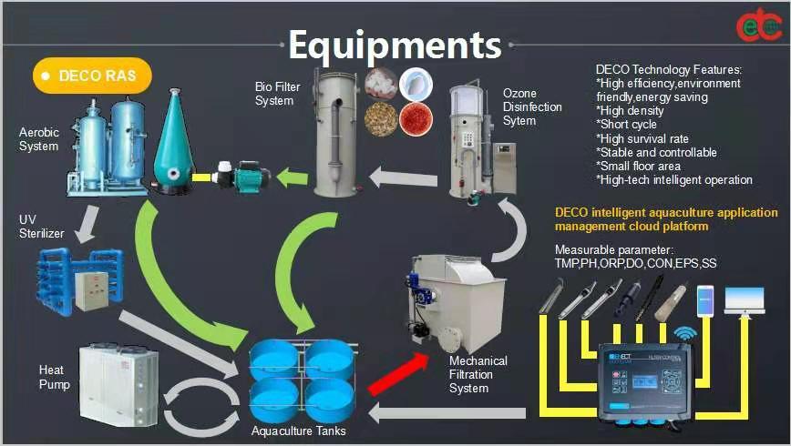 ديكو راس (نظام إعادة تدوير الاستزراع المائي)