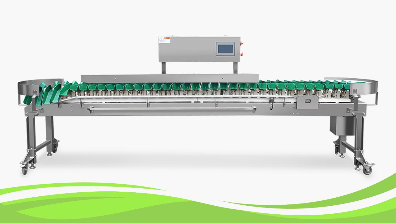 Машина сортировки веса многопользования