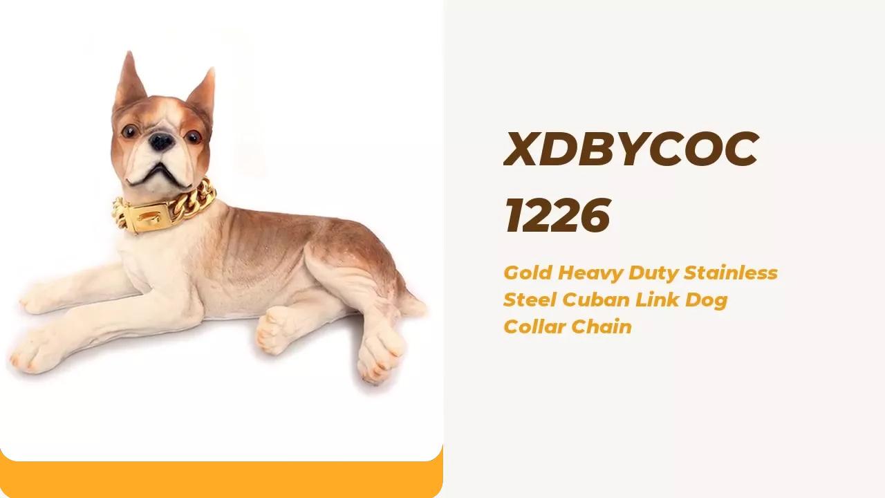 MEJOR QUICK COLLAR DE PET PET ORO DE ORO DE ACERO DE CUBANO CUBANOS DE ACERO CUBANO CUBANO Cadena de cuello de perro fábrica