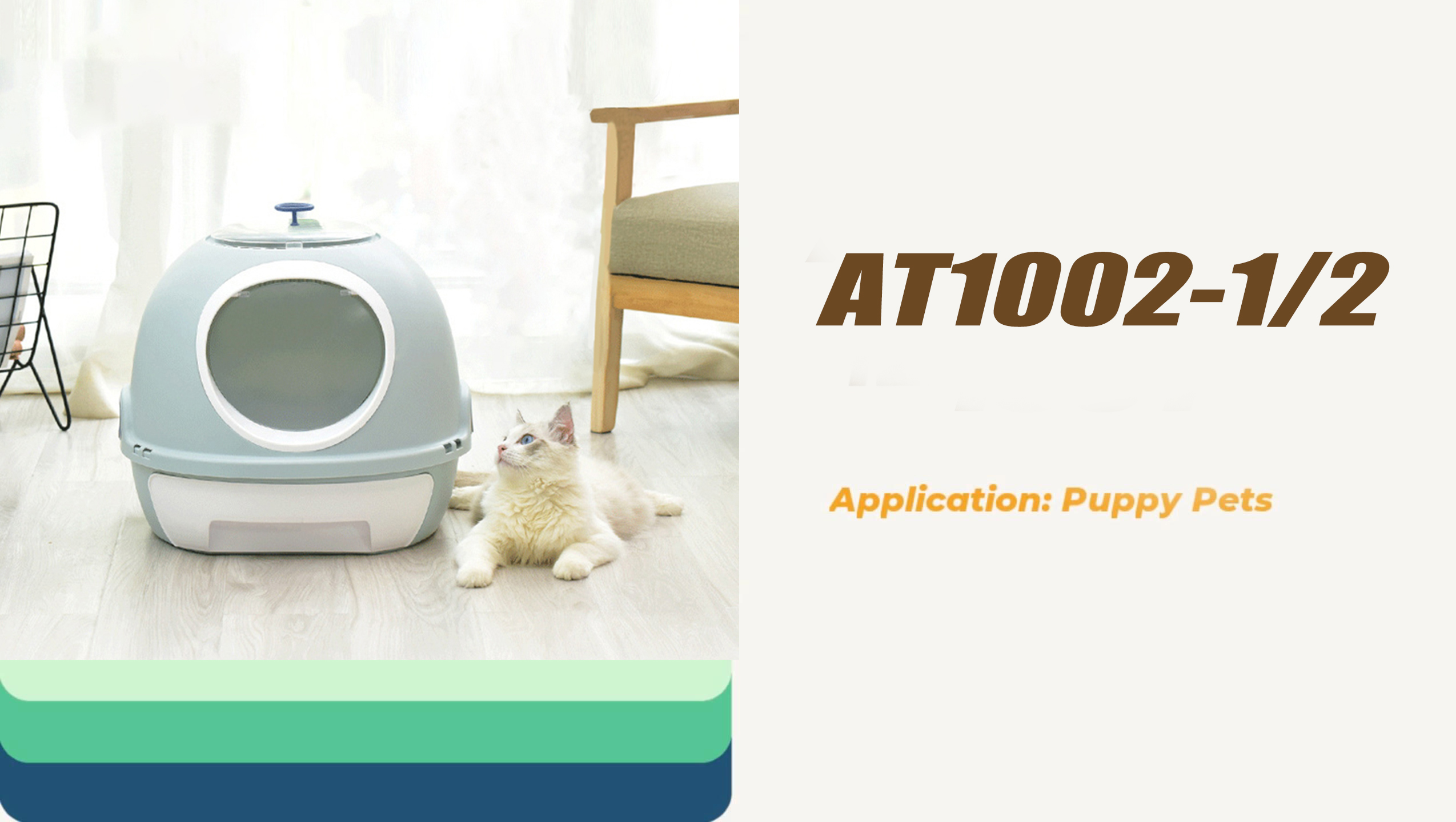 litter box cats litter box toilet for cats